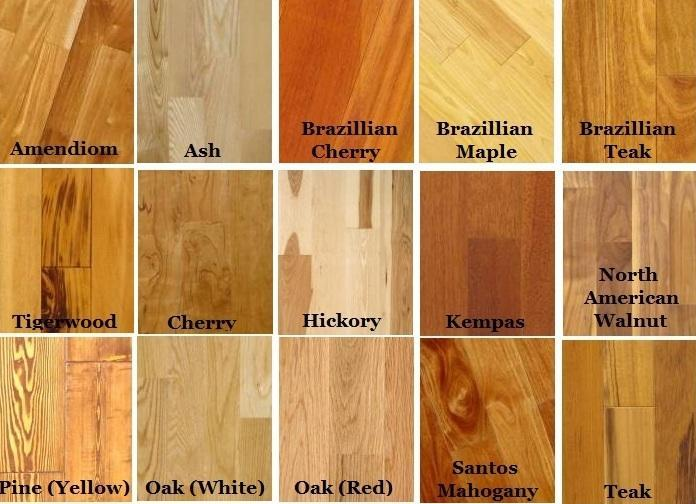 Types Of Hardwood Floors Pictures Modern House